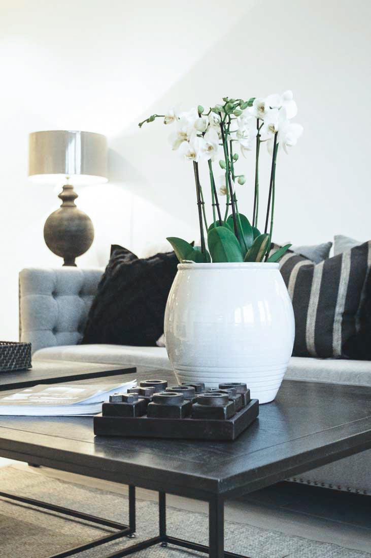 stue design, koselig, lunefult